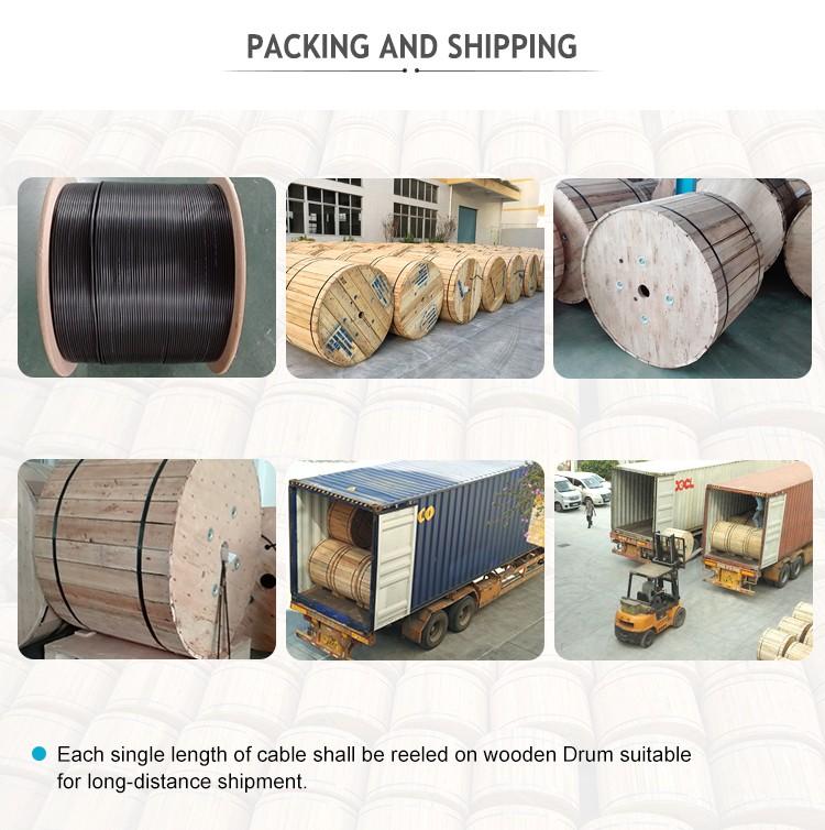Packaging-Shipping1